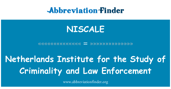 NISCALE: Netherlands Institute for the Study of Criminality and Law Enforcement