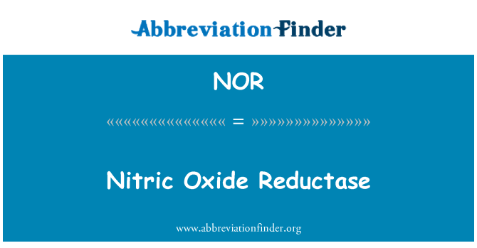 NOR: El óxido nítrico reductasa