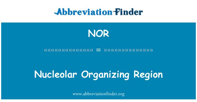 NOR: Región organizadora nucleolar