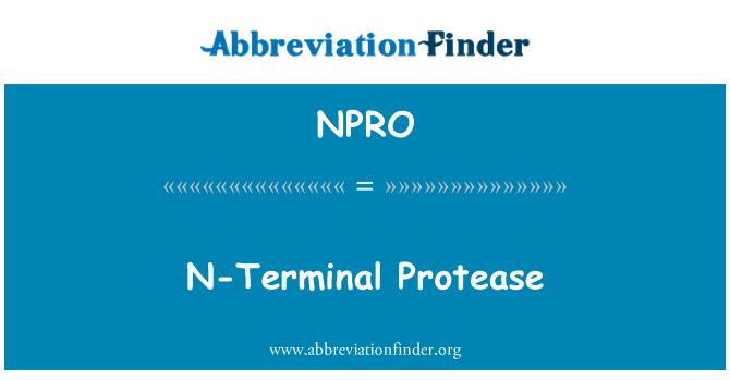 NPRO: N-Terminal proteasa