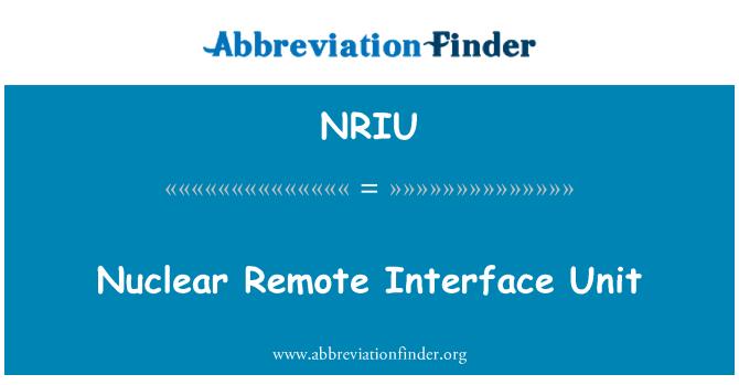 NRIU: Nuclear Remote Interface Unit