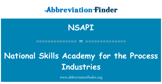 NSAPI: National Skills Academy for the Process Industries