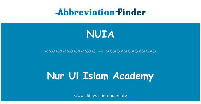 NUIA: Nur Ul Islam Academy