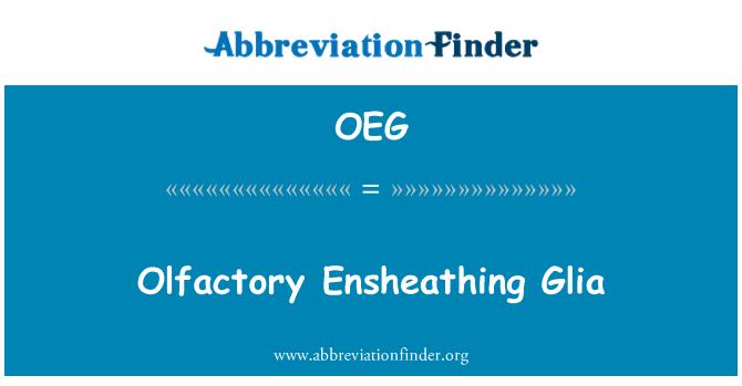 OEG: Olfactory Ensheathing Glia