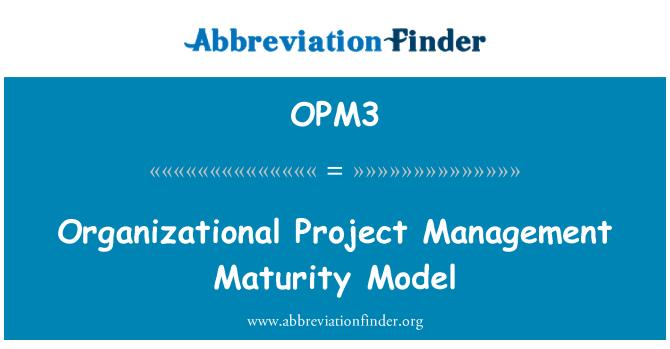 OPM3: Organizational Project Management Maturity Model