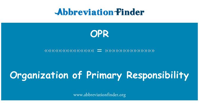 OPR: Birincil sorumluluğu organizasyonu
