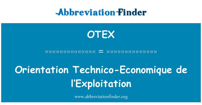 OTEX: Orientacijos techninių-Economique de l'Exploitation