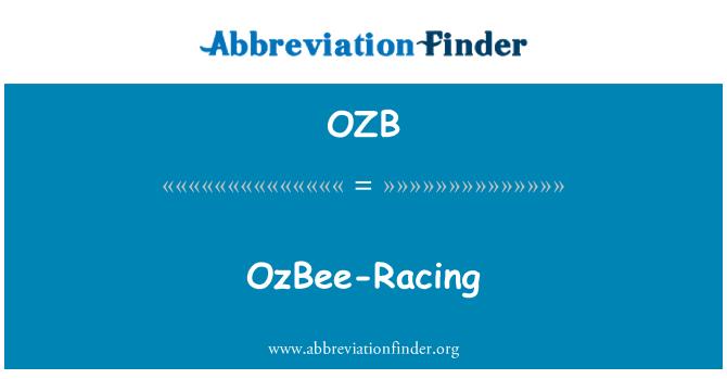 OZB: OzBee yarış