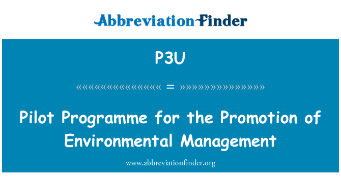P3U: Pilot Programme for the Promotion of Environmental Management