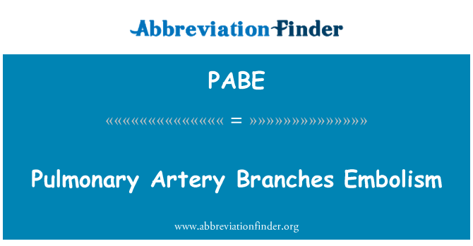 PABE: Pulmonary Artery Branches Embolism