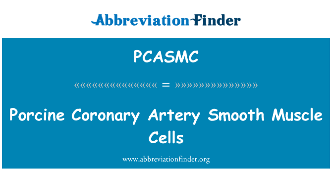 PCASMC: Porcine Coronary Artery Smooth Muscle Cells