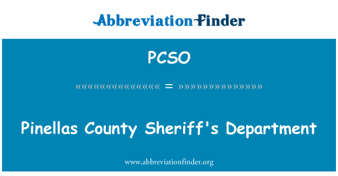 PCSO: Pinellas County Sheriff's Department