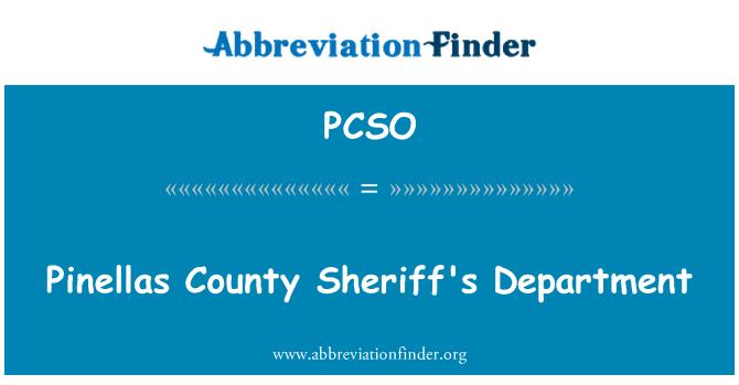 PCSO: Pinellas County Şerif bölümü