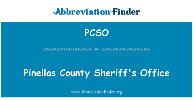 PCSO: Pinellas County Sheriff's Office