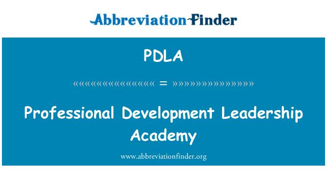 PDLA: Profesyonel gelişim liderlik Akademisi