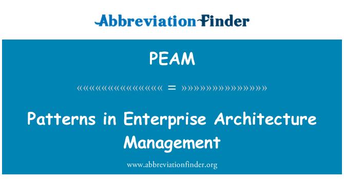 PEAM: Patterns in Enterprise Architecture Management