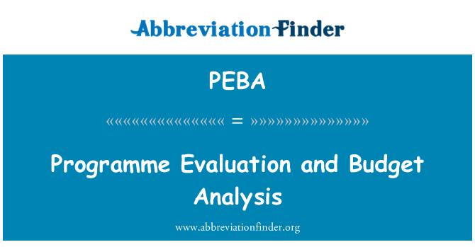 PEBA: Programme Evaluation and Budget Analysis