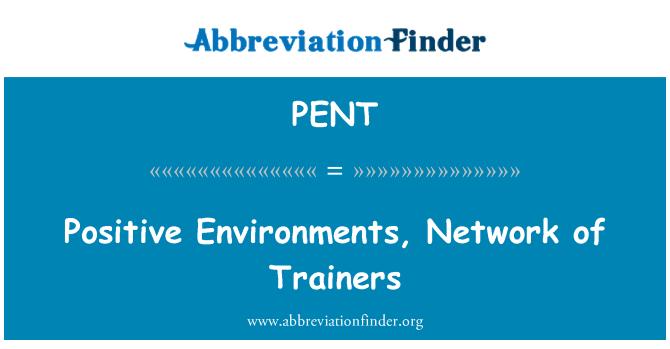 PENT: Positiivset töökeskkonda, koolitajate võrgustik