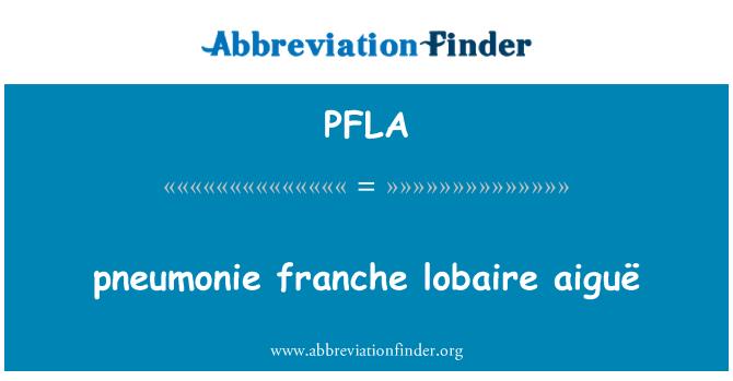 PFLA: pneumonie franche lobaire aiguë