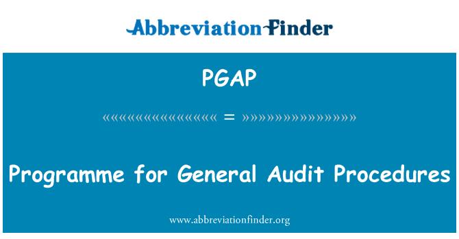 PGAP: Programme for General Audit Procedures