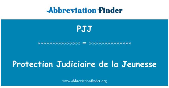 PJJ: Protección Judiciaire de la Jeunesse