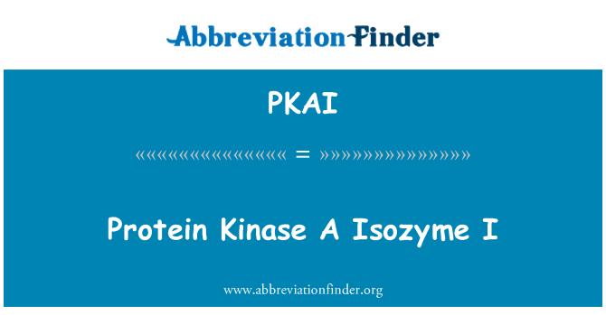PKAI: Protein Kinase A Isozyme I