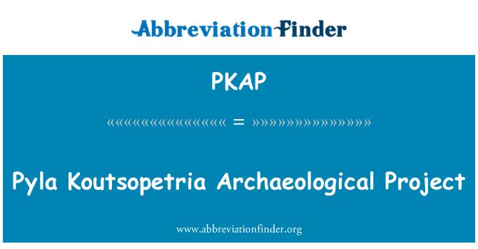 PKAP: Pyla Koutsopetria Archaeological Project