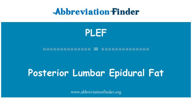 PLEF: Posterior Lumbar Epidural Fat