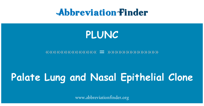 PLUNC: Palate Lung and Nasal Epithelial Clone
