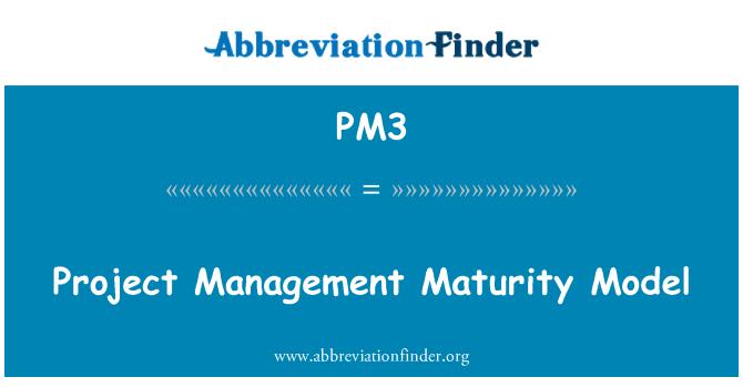 PM3: Project Management Maturity Model