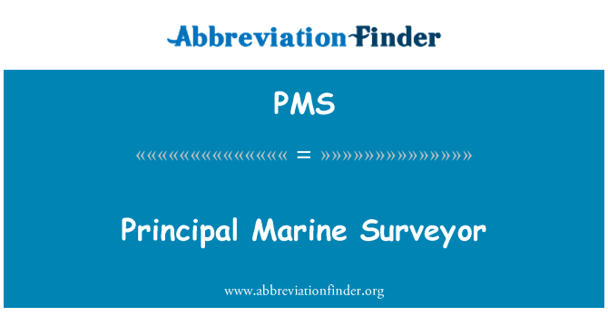 PMS: Principal Marine Surveyor