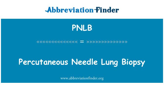 PNLB: Percutaneous Needle Lung Biopsy