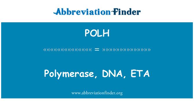 POLH: 聚合酶,DNA,ETA