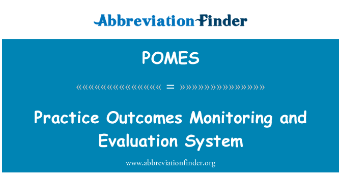 POMES: Practice Outcomes Monitoring and Evaluation System