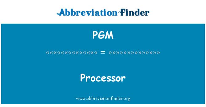 PGM: 处理器