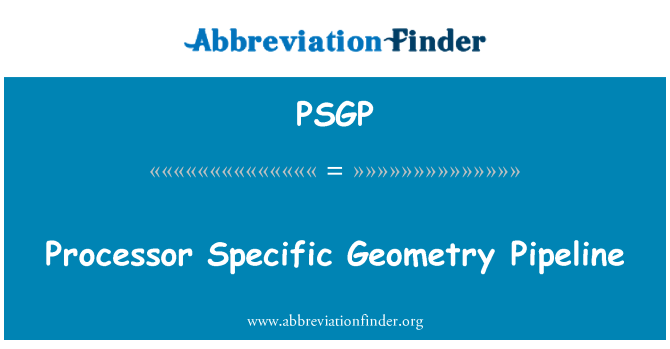 PSGP: Processor Specific Geometry Pipeline