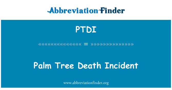 PTDI: Palm Tree muerte incidente