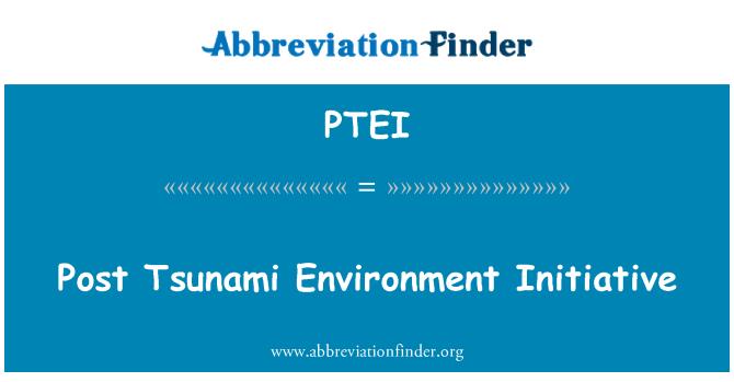 PTEI: Post Tsunami Environment Initiative