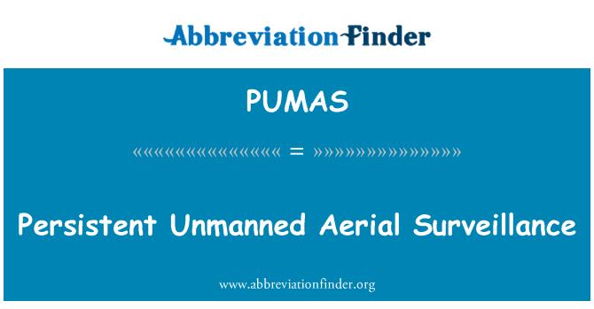 PUMAS: Persistent Unmanned Aerial Surveillance