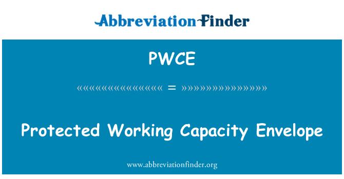 PWCE: Protected Working Capacity Envelope