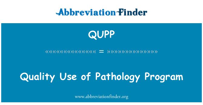 QUPP: Quality Use of Pathology Program