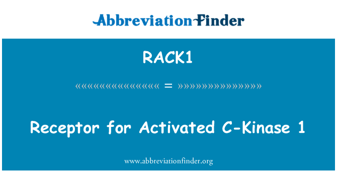 RACK1: Receptor for Activated C-Kinase 1