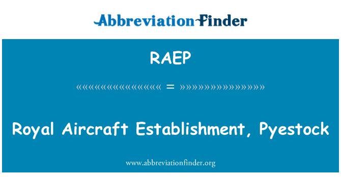 RAEP: Royal Aircraft Establishment, Pyestock
