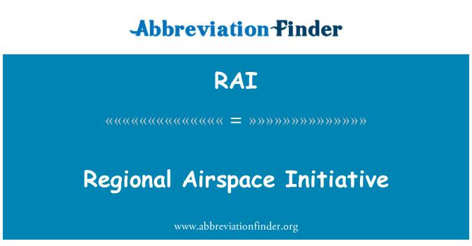 RAI: Regional Airspace Initiative