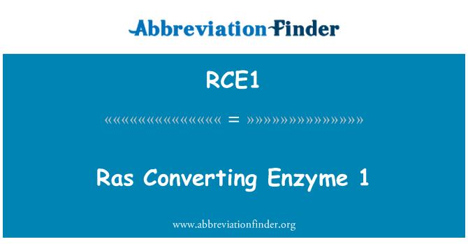 RCE1: Ras enzymu 1
