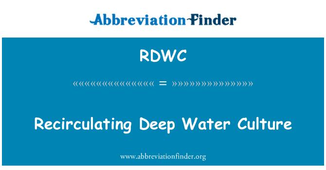 RDWC: گہرے پانی ثقافت ریکارکولیٹانگ