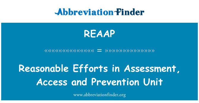 REAAP: Reasonable Efforts in Assessment, Access and Prevention Unit