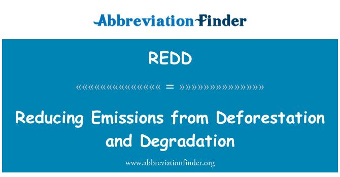 REDD: 减少森林砍伐和退化的排放