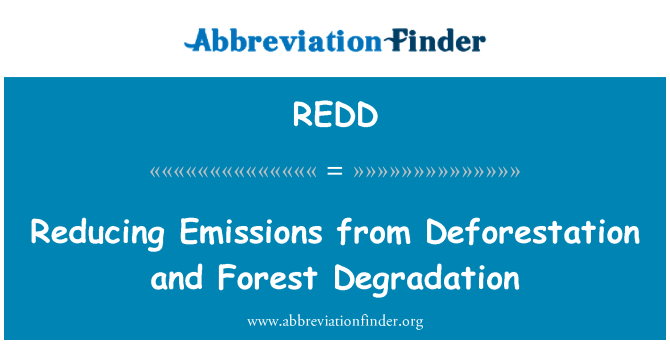 REDD: 减少毁林和森林退化的排放