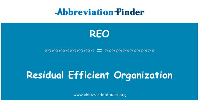 REO: Residual Efficient Organization